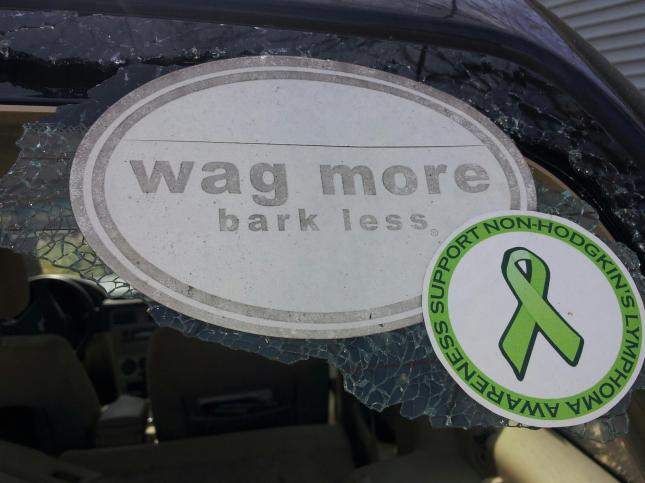 The sentiments on what remained of my rear window.