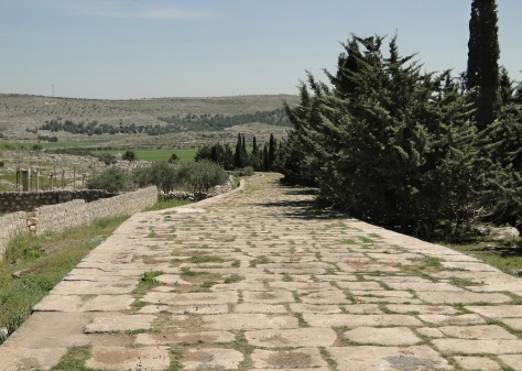 Ancient_Roman_road_of_Tall_Aqibrin