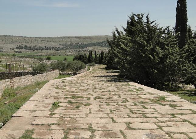 Ancient_Roman_road_of_Tall_Aqibrin
